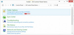 how-to-show-hidden-files-windows-8